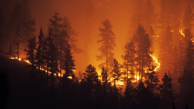 Wildfire Updates Map