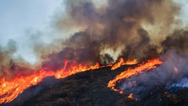 fire fight australia - photo #22