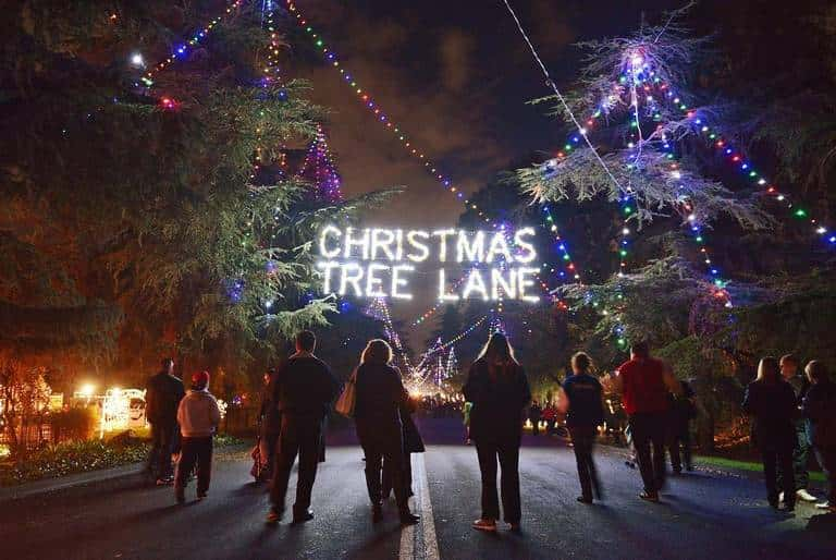 Christmas Tree Lane Fresno.Christmas Tree Lane 105 1 The Blaze