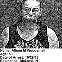 Alison-Woodsmall.png