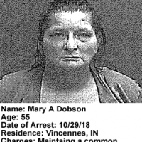 Mary-A-Dobson.png