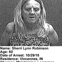 Sherri-Robinson.png