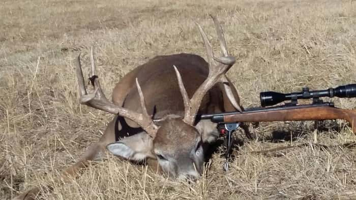 Drop tine 4x5 buck shot by Kim Myers of Custer County on 11/15/16
