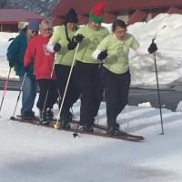 Giant Ski Race 2