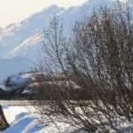 IMG_4170: Glorious Valdez