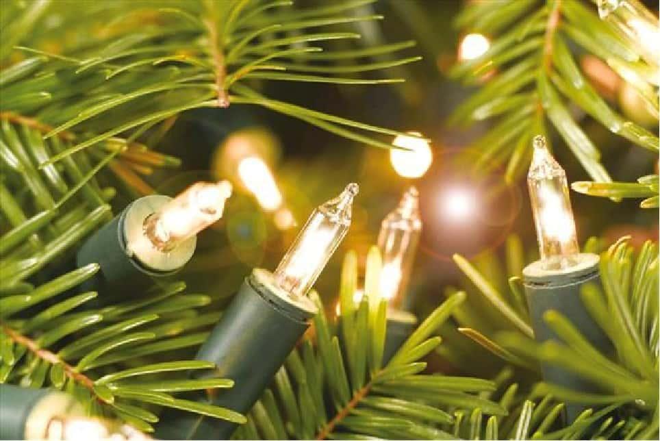 1st Annual Christmas Tree Lighting Service