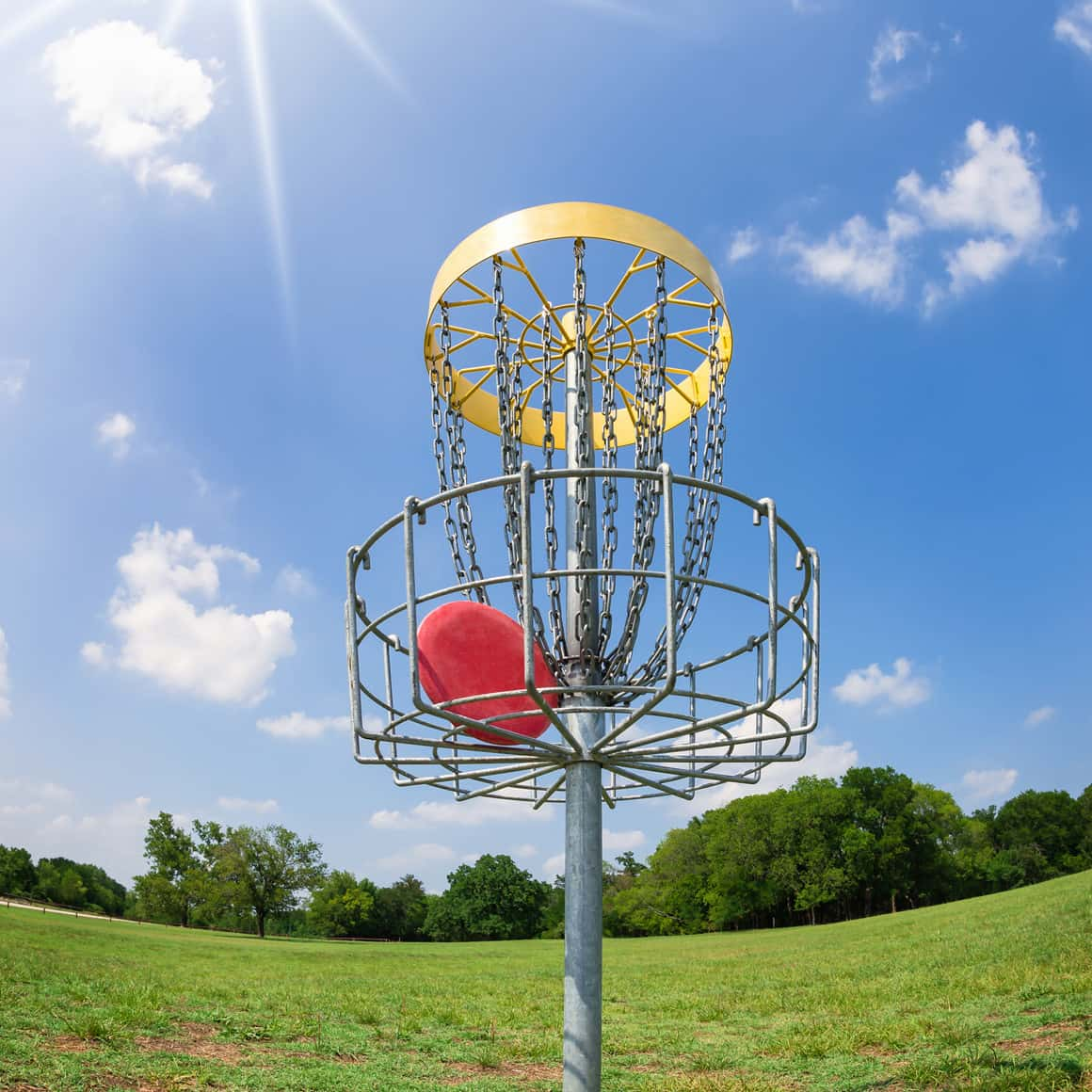 Dankwardt Park Disc Golf Course To Be Expanded Behind ...