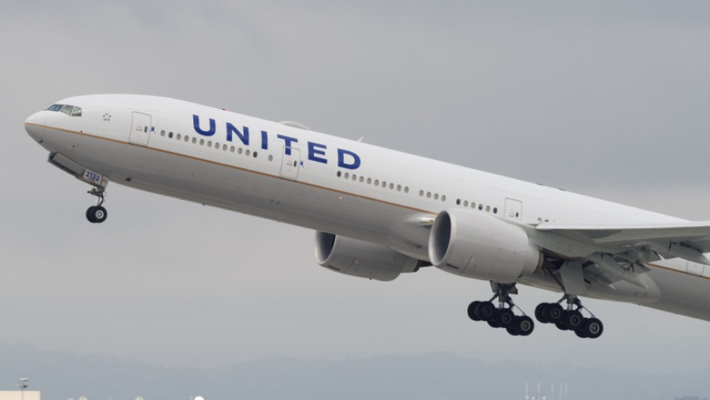 Dog Dies On United Flight After Flight Attendant Allegedly Told Passenger To Put Pet Carrier In Overhead Bin