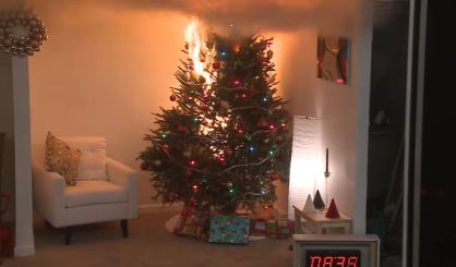 michigan state fire marshal kevin sehlmeyer is reminding everyone to be careful about their christmas trees he tells wsjm news a tree can go up in flames - When Does The Christmas Tree Go Up