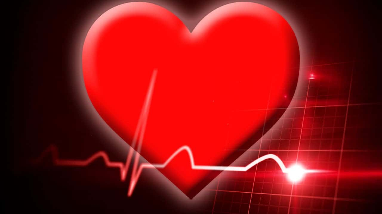 It didn\'t really hurt\': Wisconsin man\'s heart pierced in nail gun ...