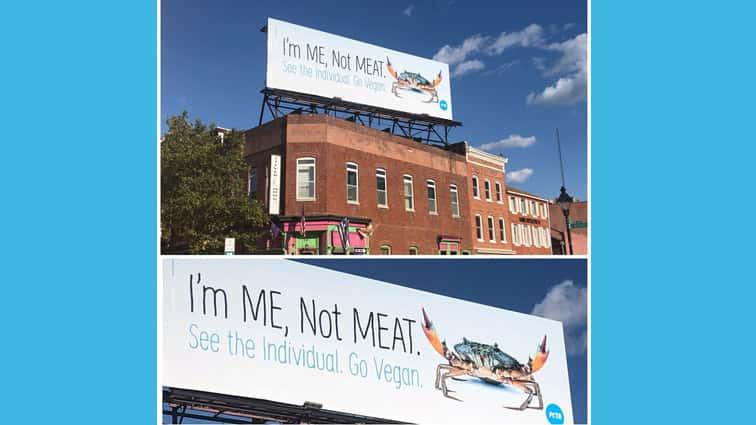 Peta Plasters Anti Crab Eating Billboards In Baltimore 98 Rock
