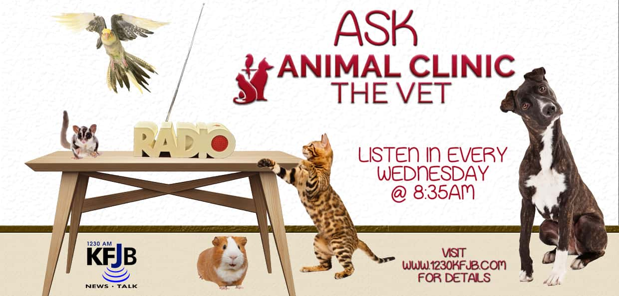 Ask Animal Clinic-The Vet | KFJB - AM