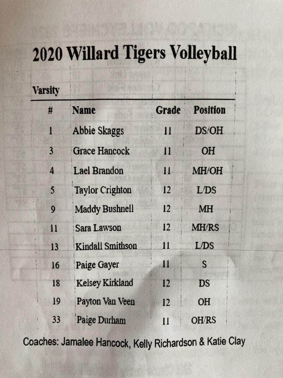 2020 Willard Volleyball Roster Ozark Sports Zone