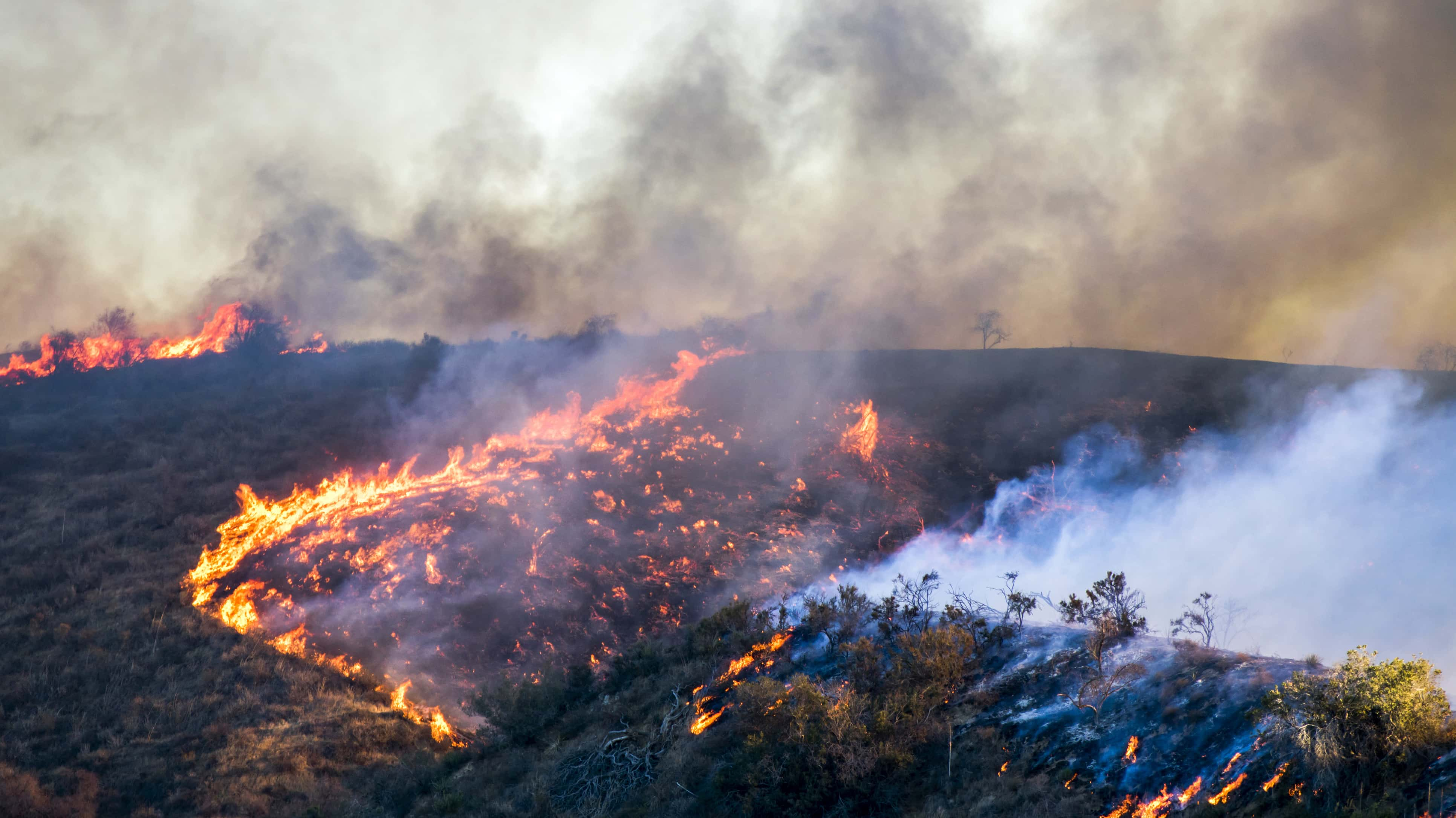 3e503d2939e Relentless California wildfires leave 82 dead