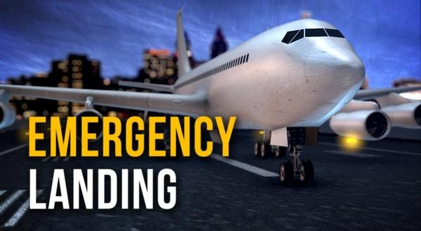 No One Hurt After Plane Makes Emergency Landing In El