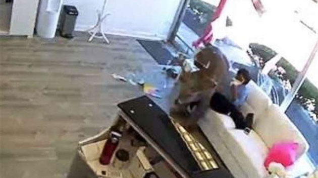 Deer Bursts Through Salon Window, Startling Customers