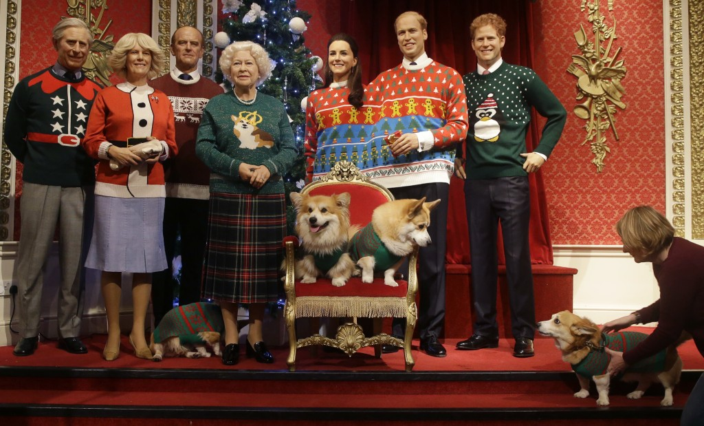 a dog owner tells her pembrokeshire welsh corgi to stay as four corgi dogs