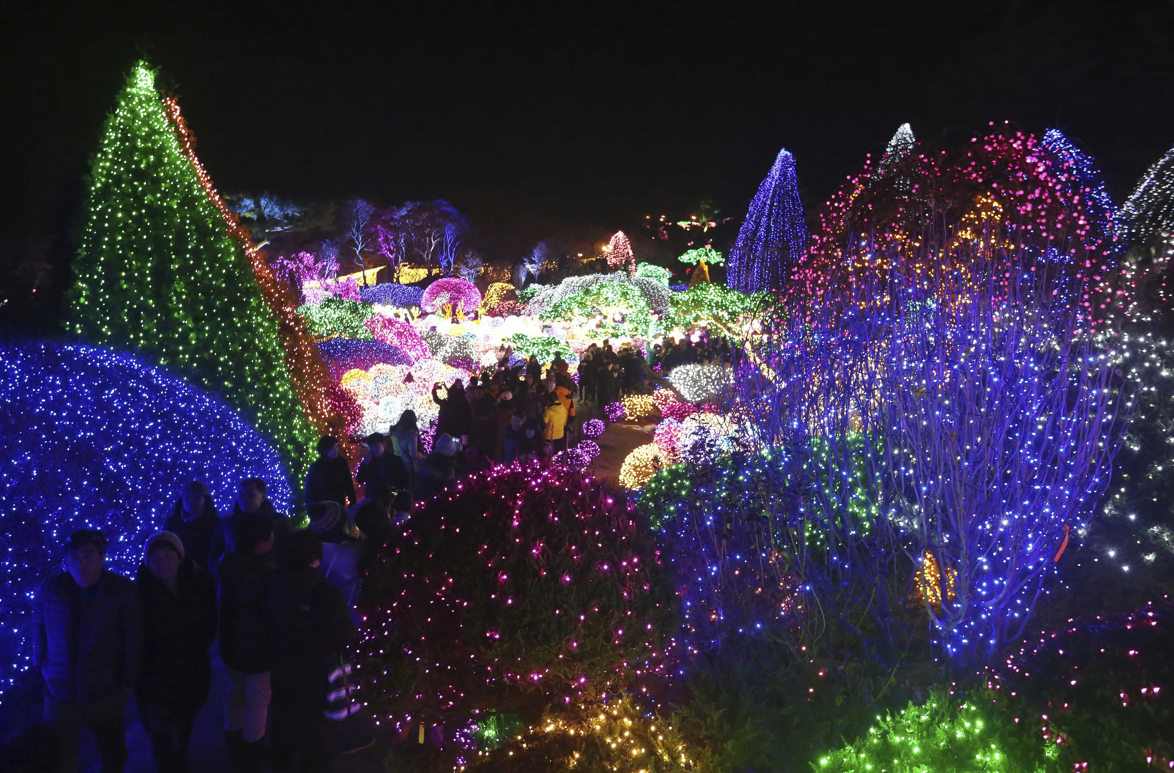 San Jose Christmas Lights.San Jose Tries To Break Guinness Book Of World Record For
