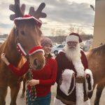 Pet Photos with Santa Day