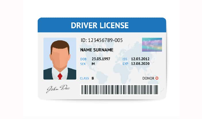 Vehicle Registrations, Driver's License, State ID all Extended Through  September 30th in MI | Moody on the Market