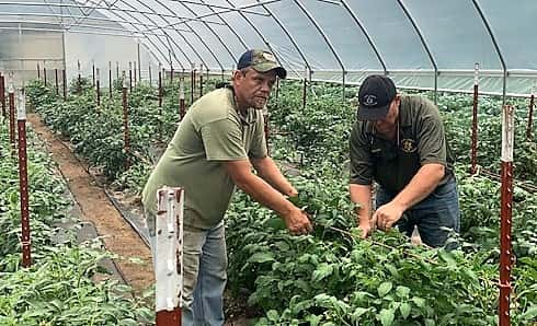 New Greenhouse, Grow Tunnel Added To Henry Co  Sheriff's