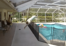 man dives into pool to save son