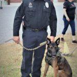 Chris Lemaire: Turkey Creek Police Department