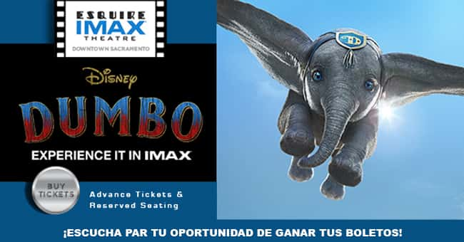 DUMBO - VIVE UNA EXPERIENCIA IMAX EN EL ESQUIRE IMAX THEATRE