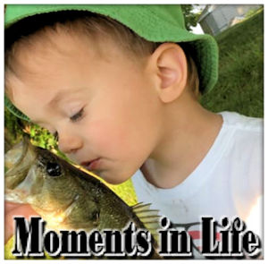 Moments in Life