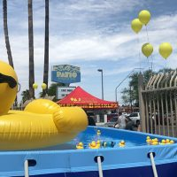 splash-of-fun-day-18-05.jpg