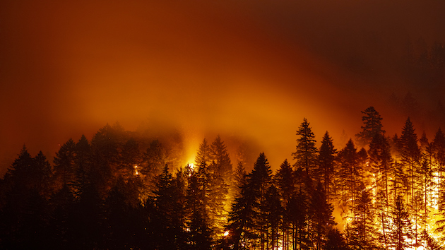 More evacuations ordered in California as wildfires threaten giant sequoia trees