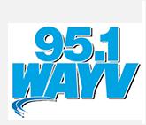 logo_wayv