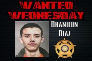 palmview crimestoppers wanted