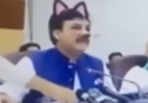 pakistani press conference with cat filter