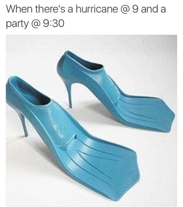 hurricane party flippers meme