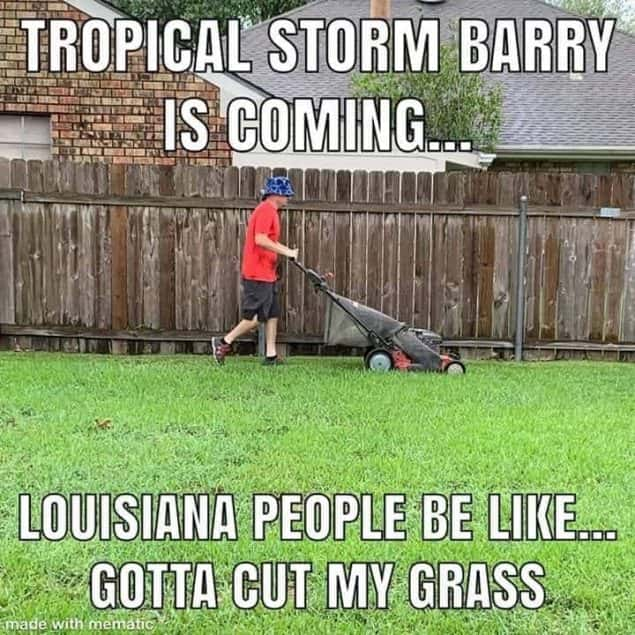 cut grass hurricane meme