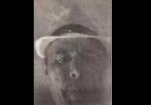 photocopy of burglars face