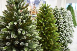 line of artificial christmas trees