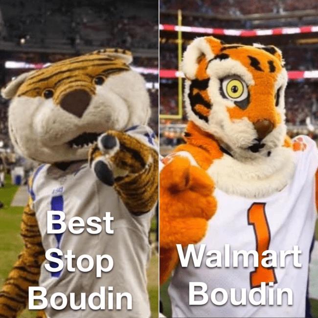 Memes | Clemson Mascot Funny Sunny 95.1