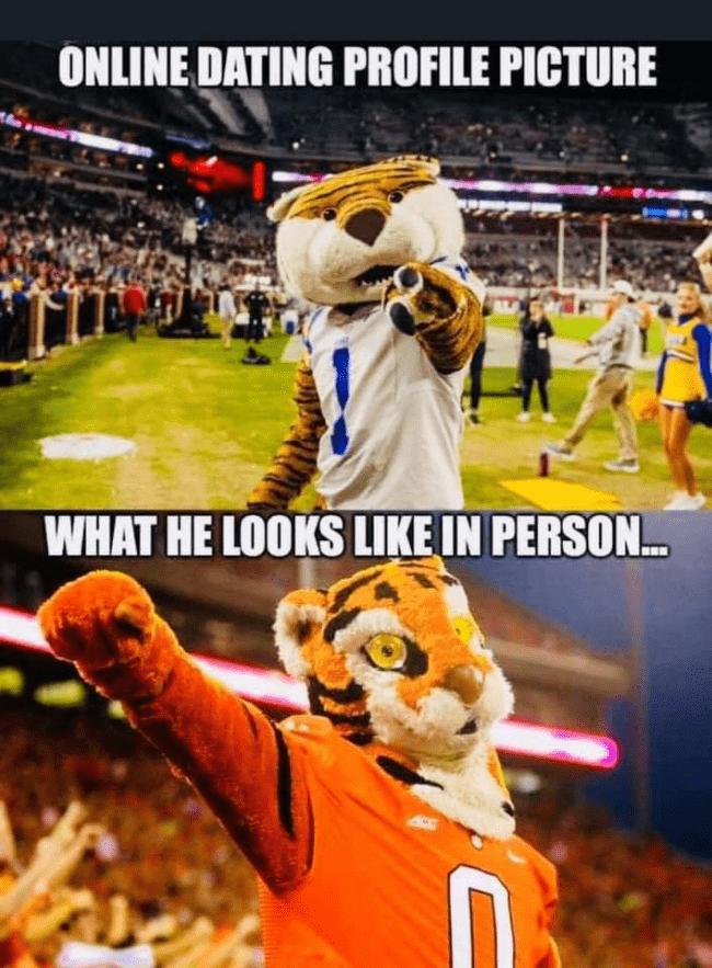 Funny Clemson Mascot Memes Big 102 1 Kybg Fm