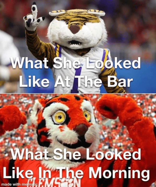 Country Pure | 106.7 Memes Clemson Mascot Funny